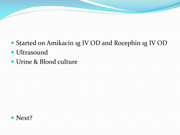 Started on Amikacin 1g IV OD and Rocephin 1g IV OD