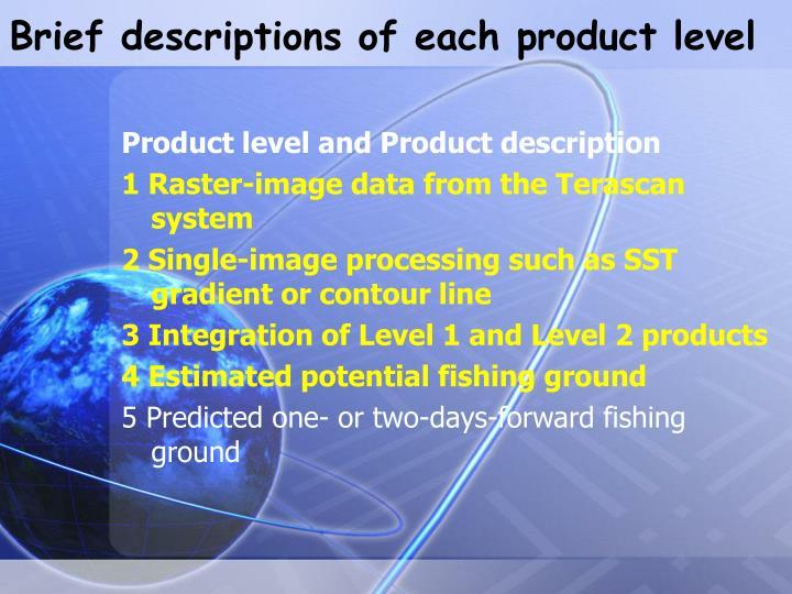 Brief descriptions of each product level