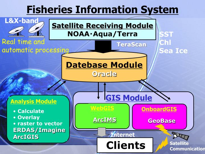 Fisheries Information System