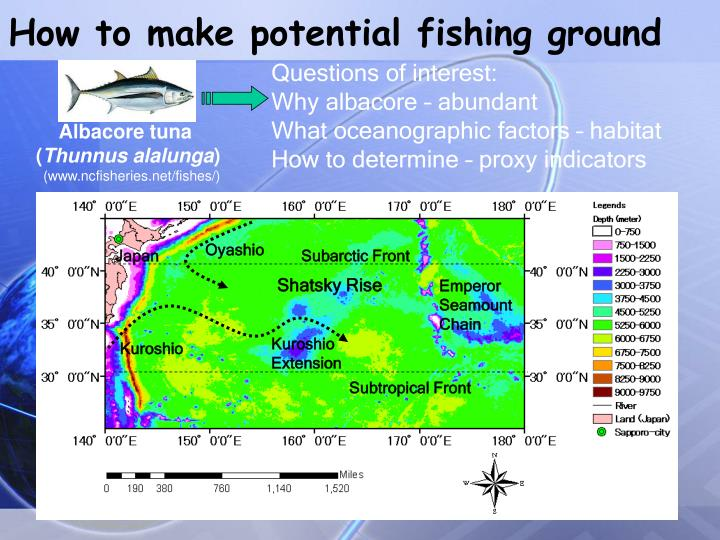 How to make potential fishing ground