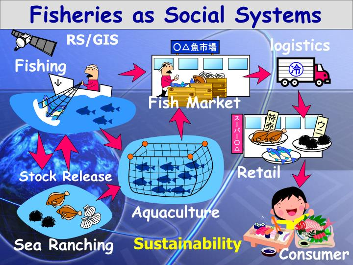 Fisheries as Social Systems