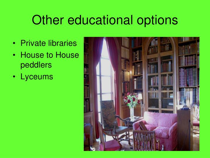 Other educational options