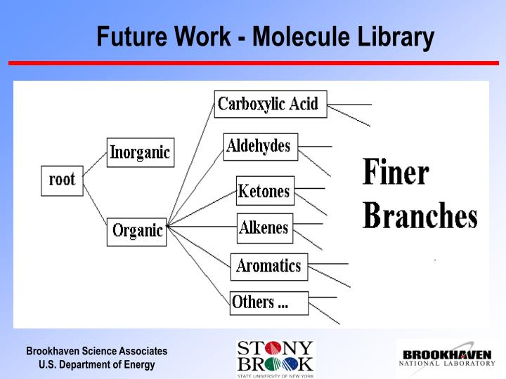 Future Work - Molecule Library