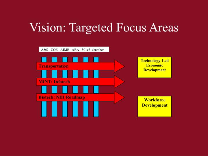 Vision: Targeted Focus Areas