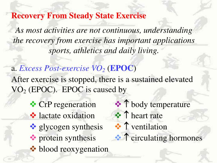 Recovery From Steady State Exercise