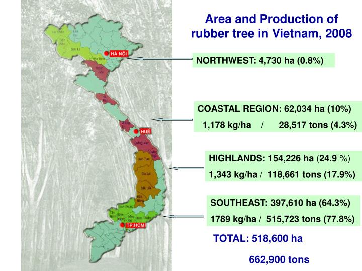 Area and Production of rubber tree in Vietnam, 2008