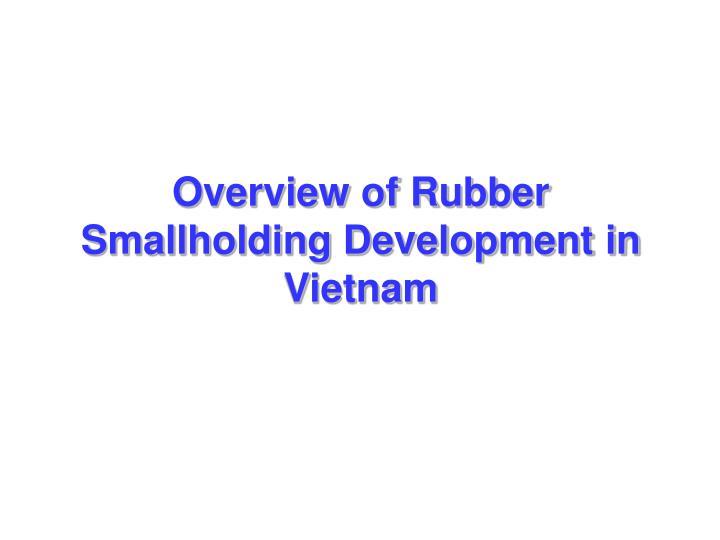 Overview of Rubber Smallholding Development in Vietnam
