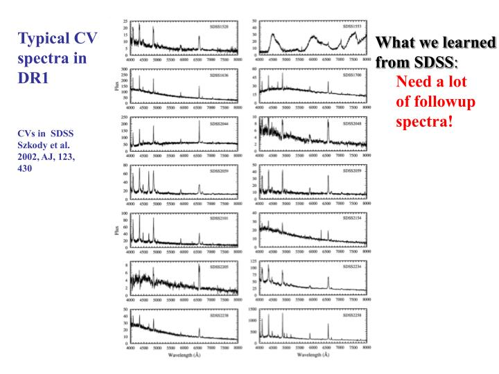 Typical CV spectra in DR1