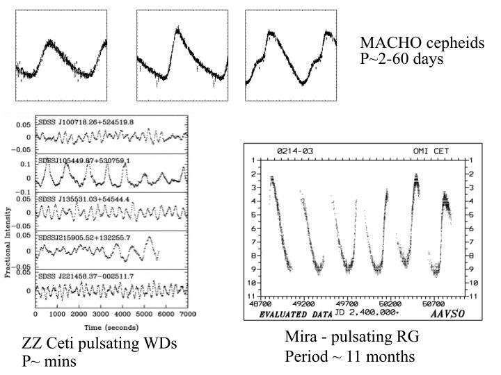 MACHO cepheids P~2-60 days