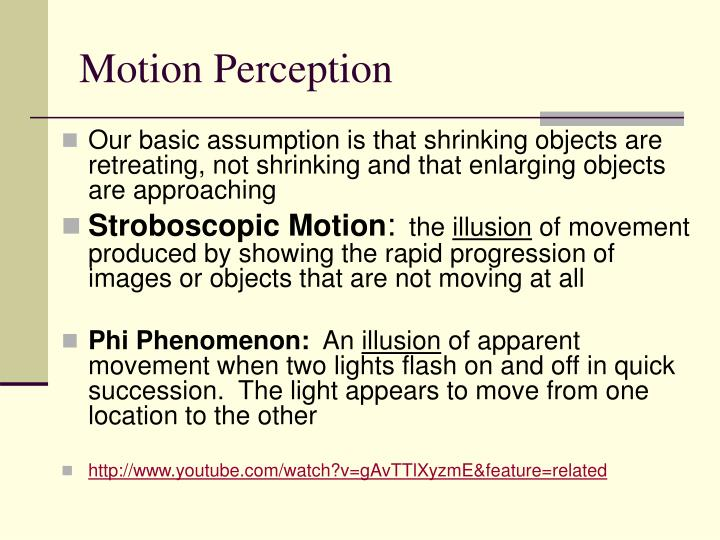 Motion Perception