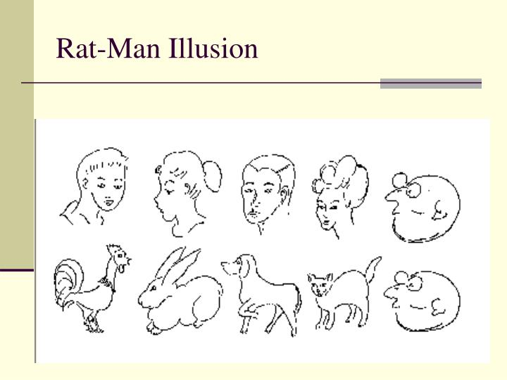Rat-Man Illusion