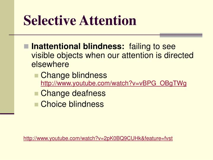 Selective Attention