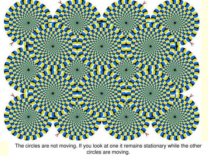 The circles are not moving. If you look at one it remains stationary while the other circles are moving.