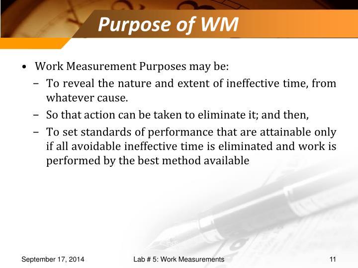 Purpose of WM