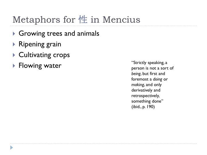 Metaphors for