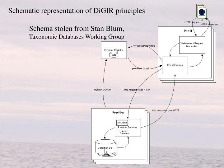 Schematic representation of DiGIR principles