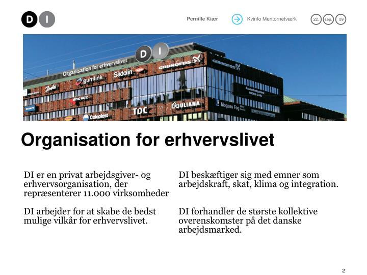 Organisation for erhvervslivet