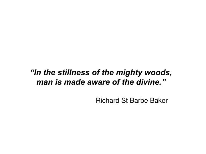 """In the stillness of the mighty woods, man is made aware of the divine."""