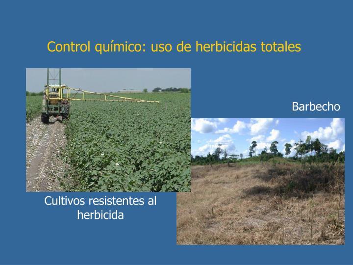 Control químico: uso de herbicidas totales