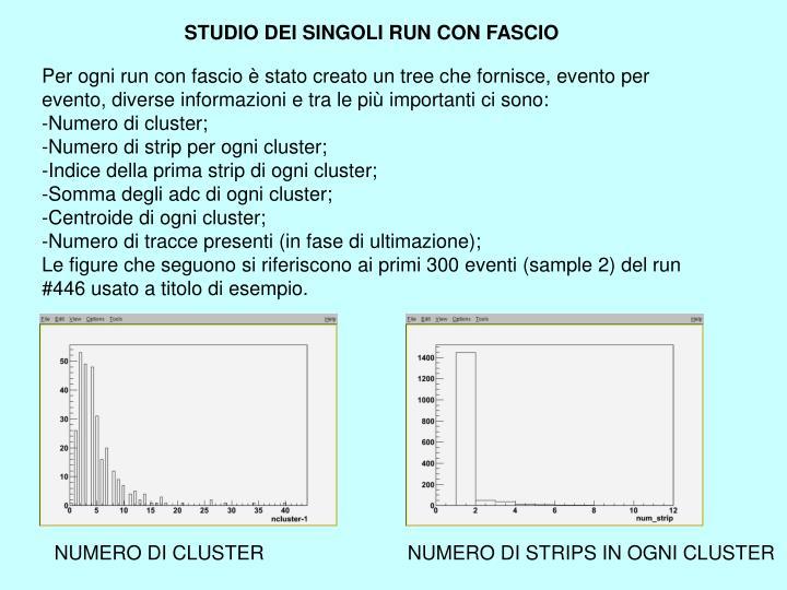 STUDIO DEI SINGOLI RUN CON FASCIO