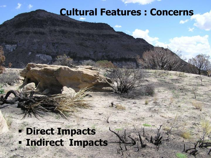 Cultural Features : Concerns