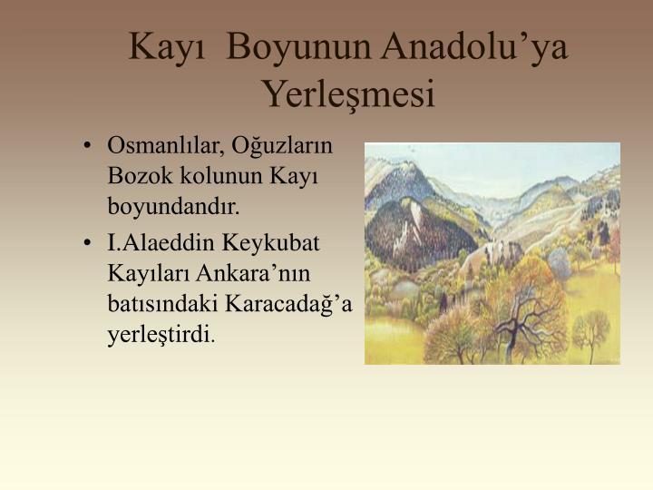 Kayı  Boyunun Anadolu'ya Yerleşmesi