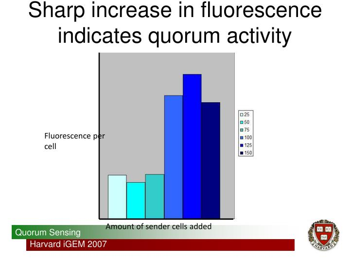 Sharp increase in fluorescence indicates quorum activity