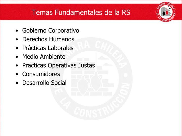 Temas Fundamentales de la RS