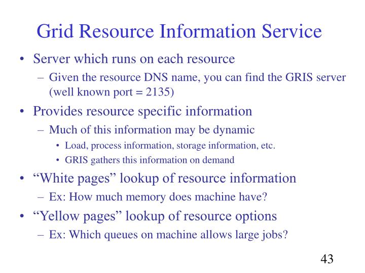Grid Resource Information Service