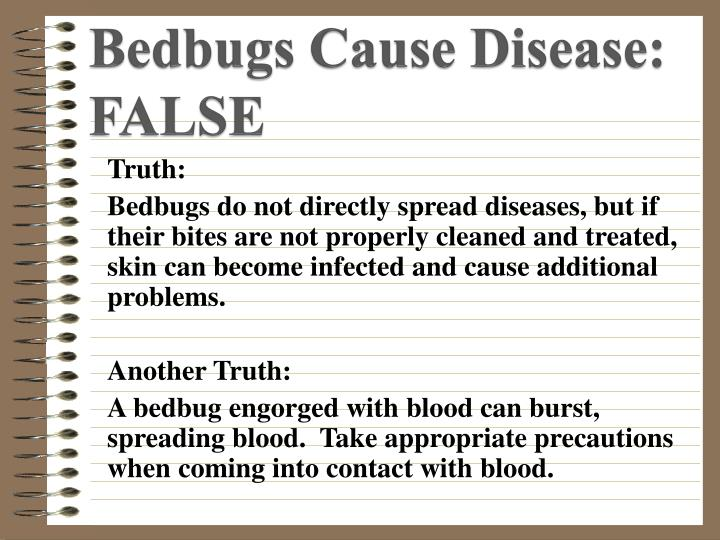 Bedbugs Cause Disease:  FALSE