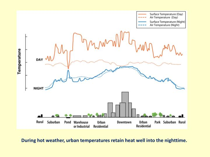 During hot weather, urban temperatures retain heat well into the nighttime.