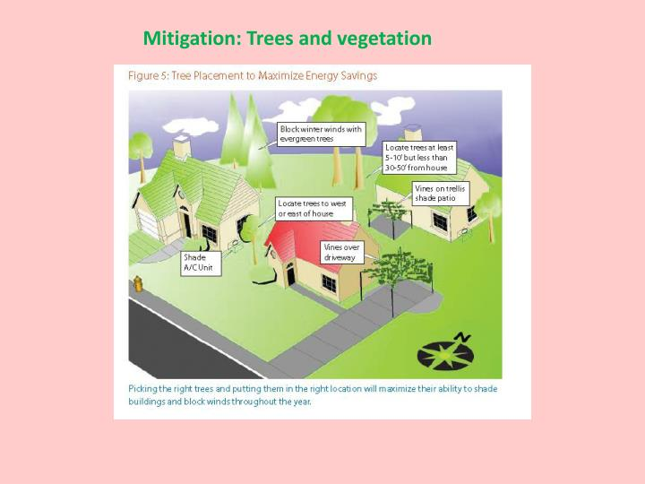 Mitigation: Trees and vegetation