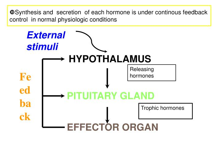 Synthesis and  secretion  of each hormone is under continous feedback  control  in normal physiologic conditions