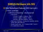 gsbug hardware info sig19