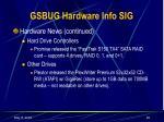 gsbug hardware info sig28