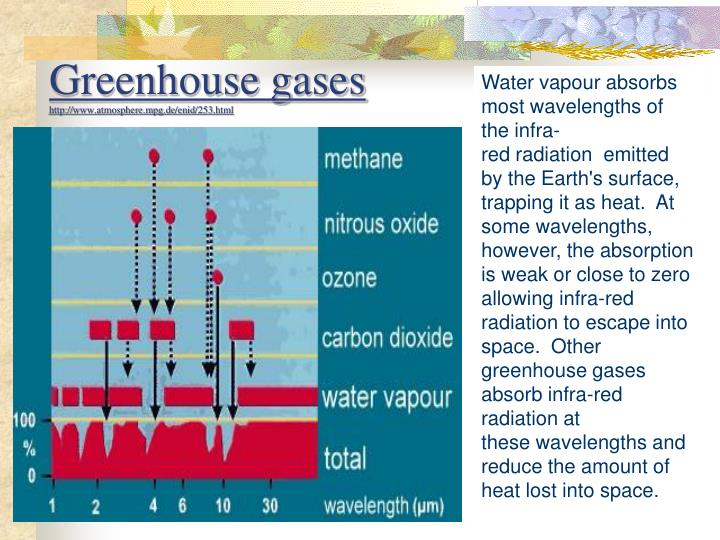 Water vapour absorbs most wavelengths of the infra-red radiation  emitted by the Earth's surface, trapping it as heat.  At some wavelengths, however, the absorption is weak or close to zero allowing infra-red radiation to escape into space.  Other greenhouse gases absorb infra-red radiation at these wavelengths and reduce the amount of heat lost into space.
