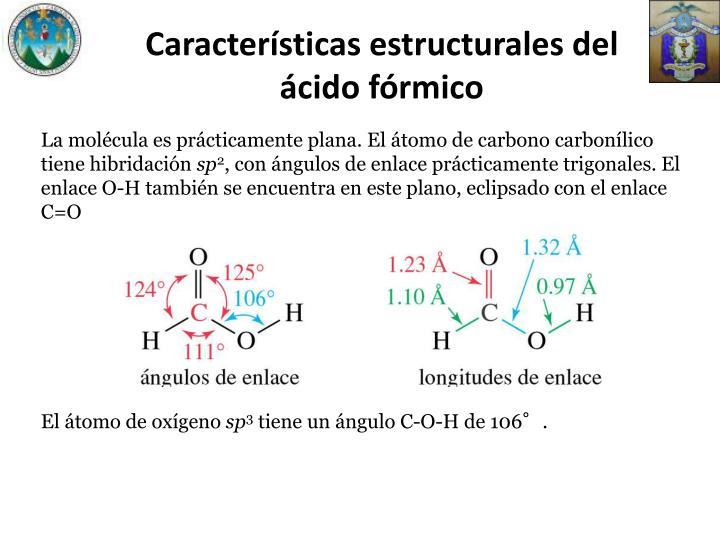 Características estructurales del ácido fórmico