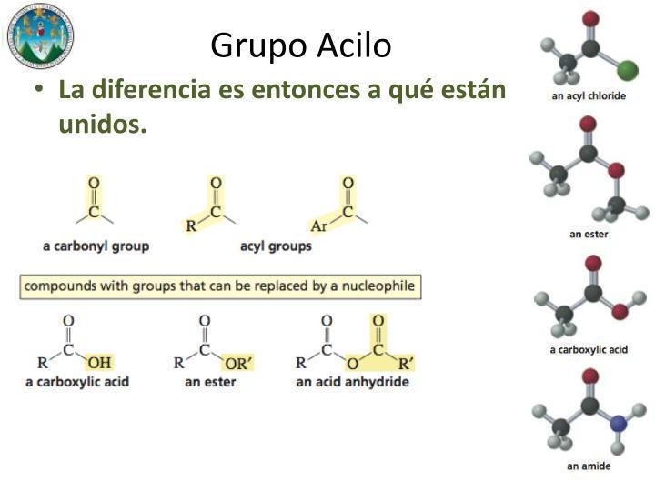 Grupo Acilo