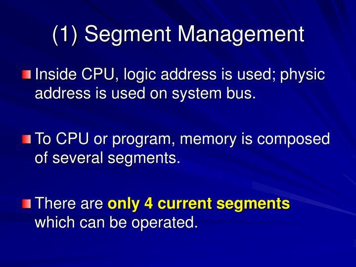 (1) Segment Management