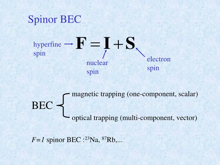 Spinor BEC