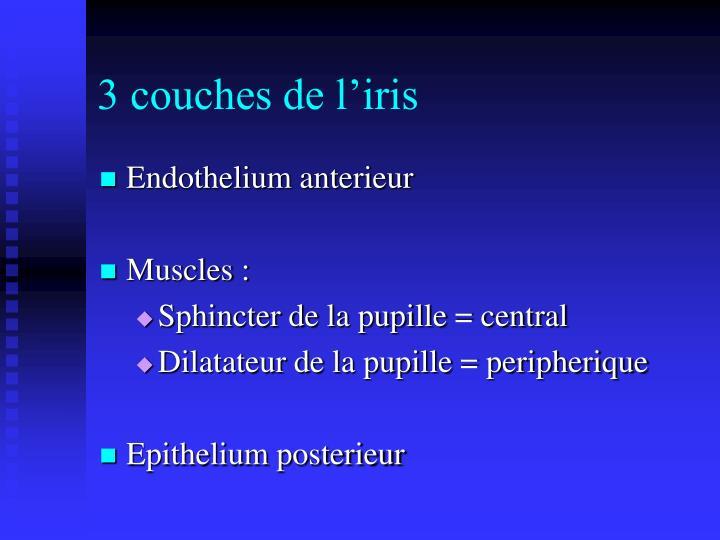 3 couches de l'iris