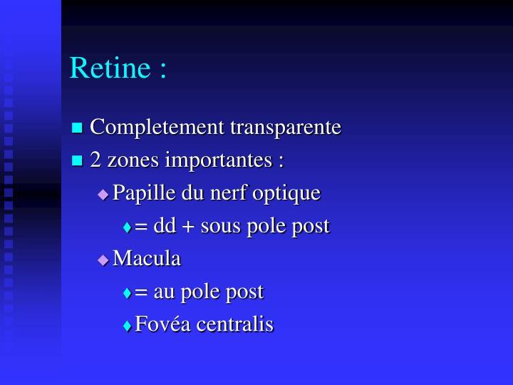 Retine :