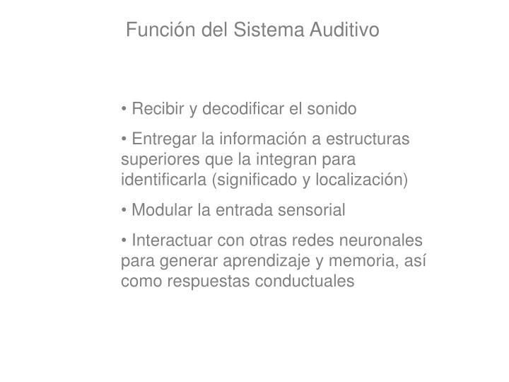 Función del Sistema Auditivo
