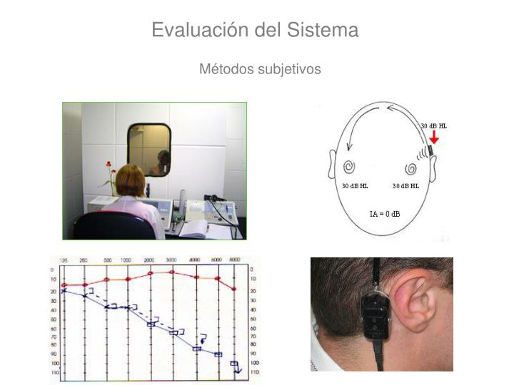 Evaluación del Sistema