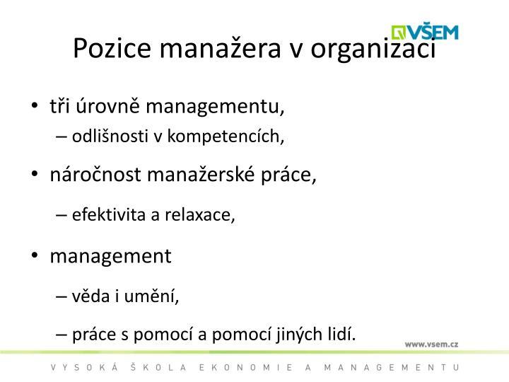 Pozice manažera v organizaci