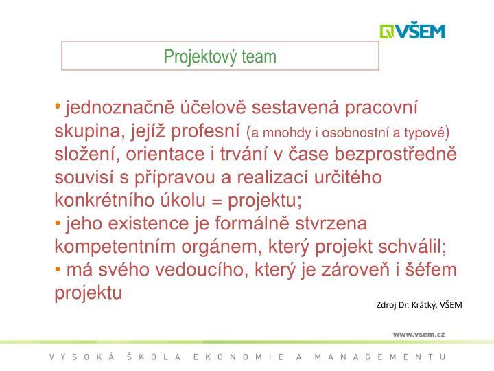 Projektový team