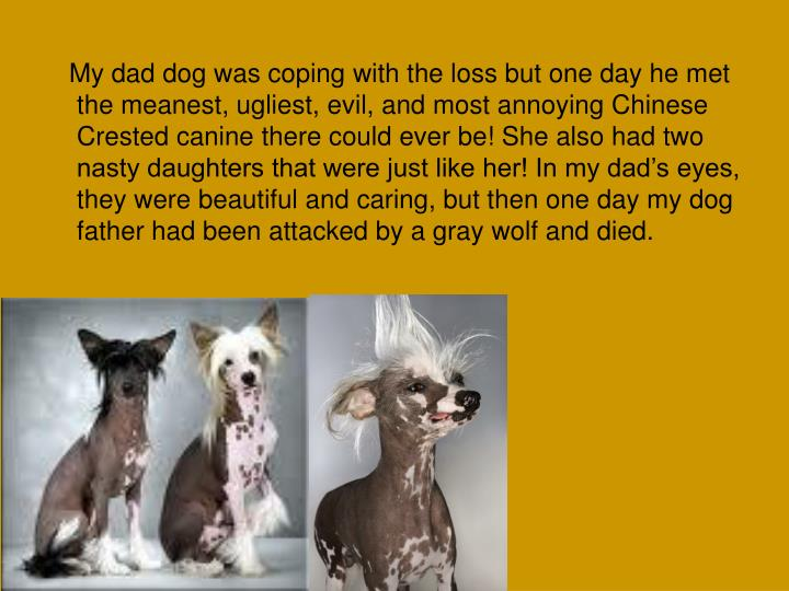 My dad dog was coping with the loss but one day he met the meanest, ugliest, evil, and most annoying Chinese Crested canine there could ever be! She also had two nasty daughters that were just like her! In my dad's eyes, they were beautiful and caring, but then one day my dog father had been attacked by a gray wolf and died.