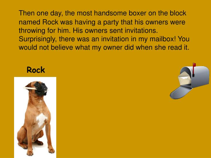 Then one day, the most handsome boxer on the block named Rock was having a party that his owners were throwing for him. His owners sent invitations.  Surprisingly, there was an invitation in my mailbox! You would not believe what my owner did when she read it.