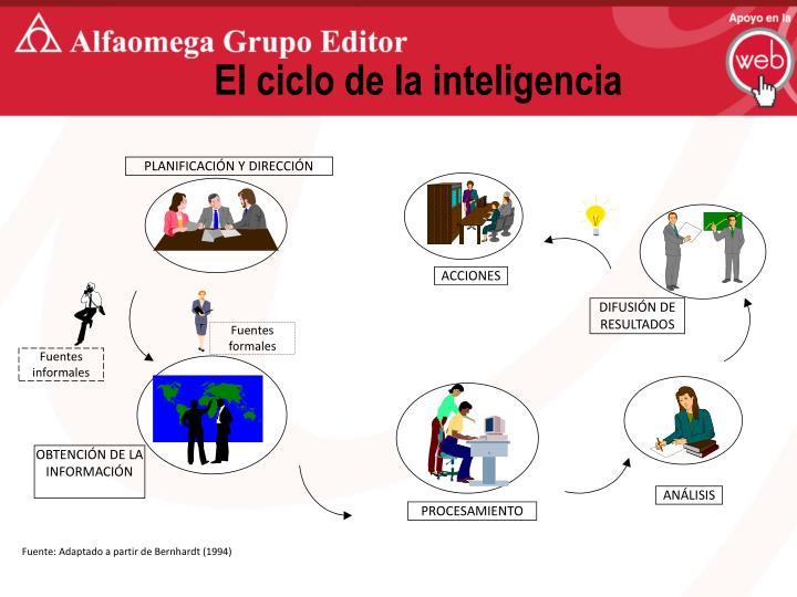 El ciclo de la inteligencia