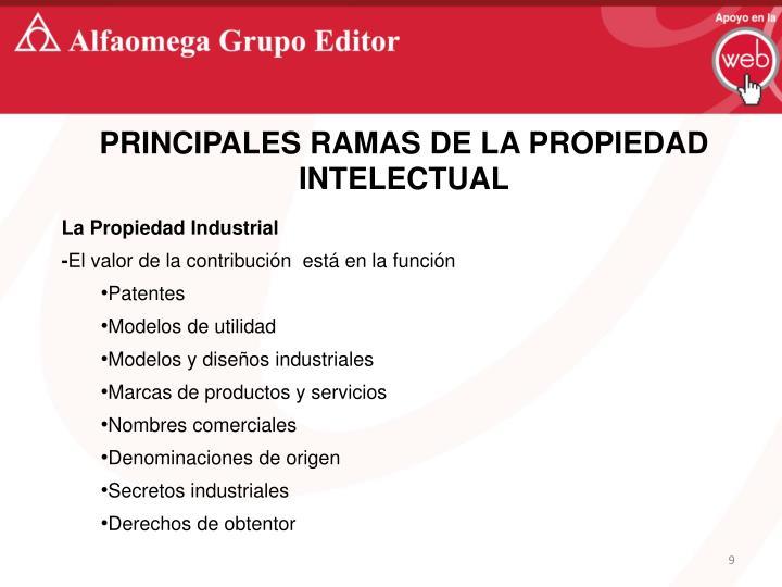 PRINCIPALES RAMAS DE LA PROPIEDAD INTELECTUAL